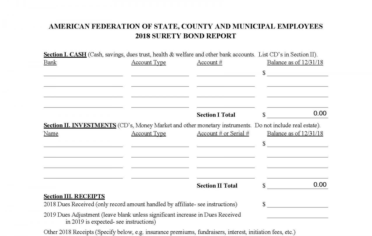 Screenshot of Surety Bond form and instructions